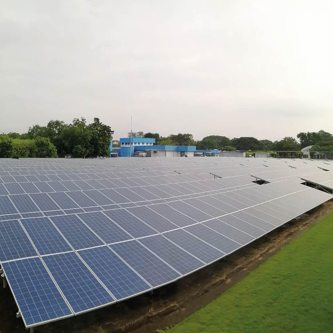 Parque solar - Nuevo Carnic